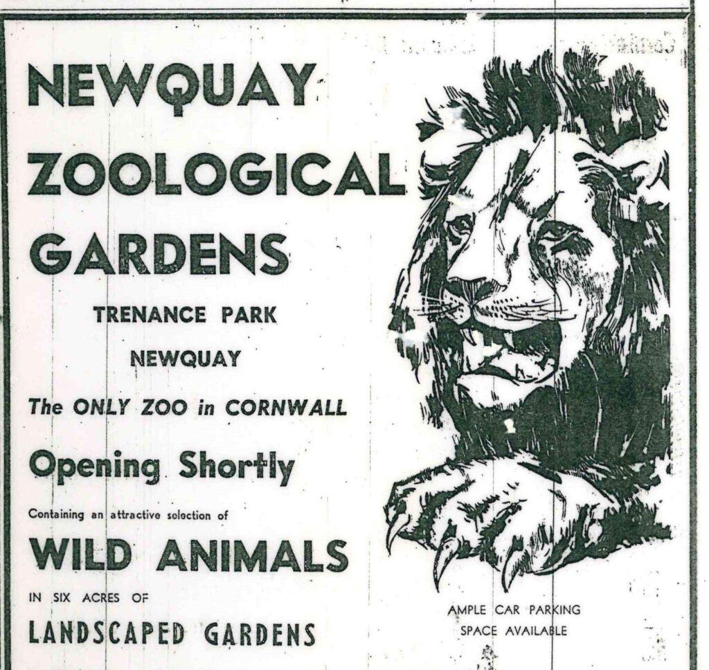 CG 22 may 1969 Lion Zoo advert 1