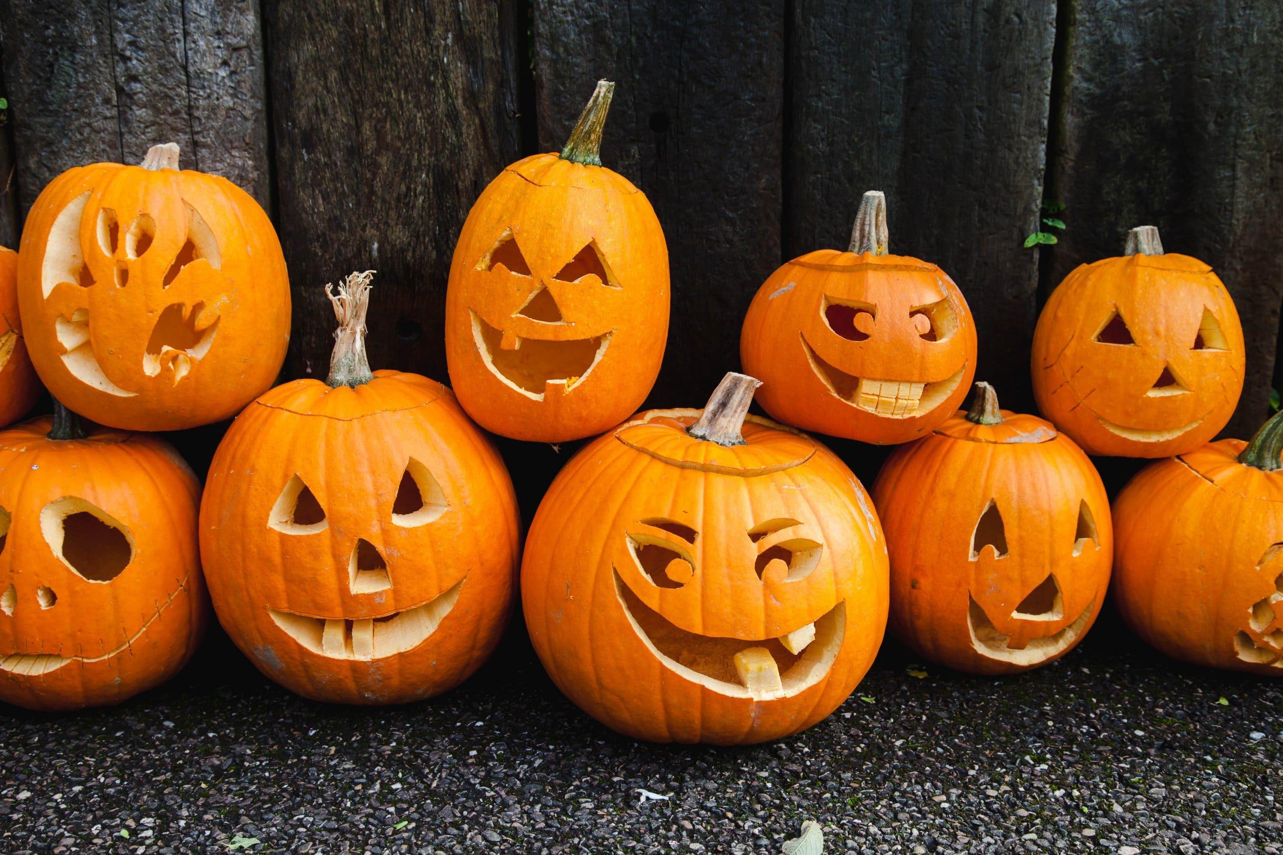 Pumpkins 13 scaled